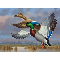 2016 Colorado Collector Waterfowl Artist-Signed Stamp