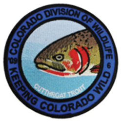 2009 Cutthroat Trout Patch, Limited Edition